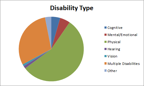 Multicolored pie chart, the largest sections of which represent disabilities with Physical (largest), Multiple Disabilities (second largest), and Mental/Emotional (third largest). Other slices represent sensory and other disabilities.