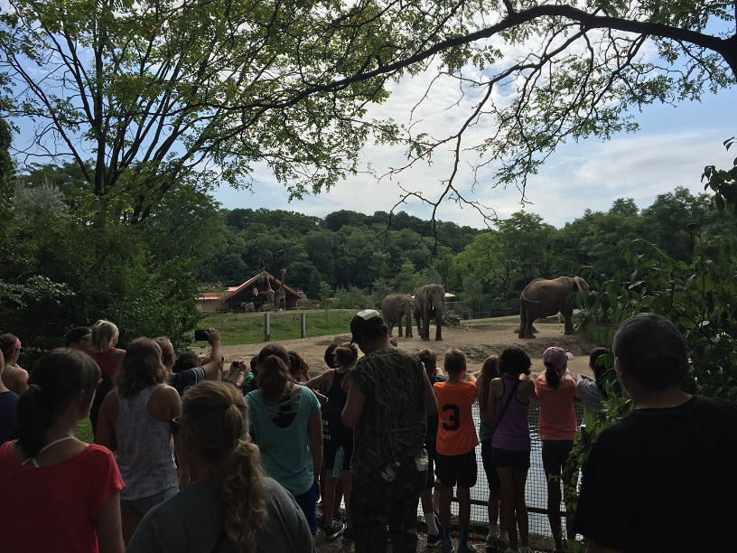 TRIPIL Youth Summer Camp 2016 at the zoo